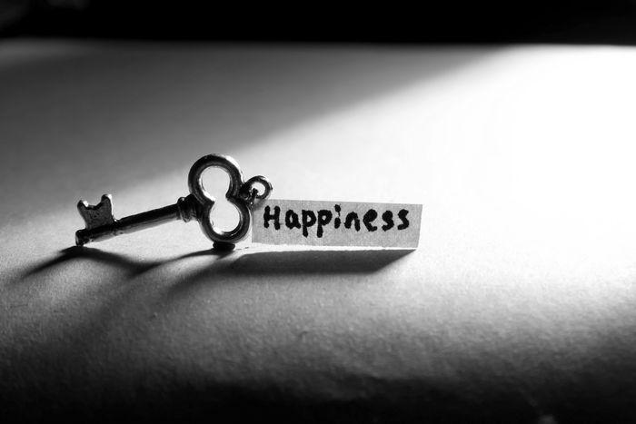 El secreto de la Felicidad.jpg